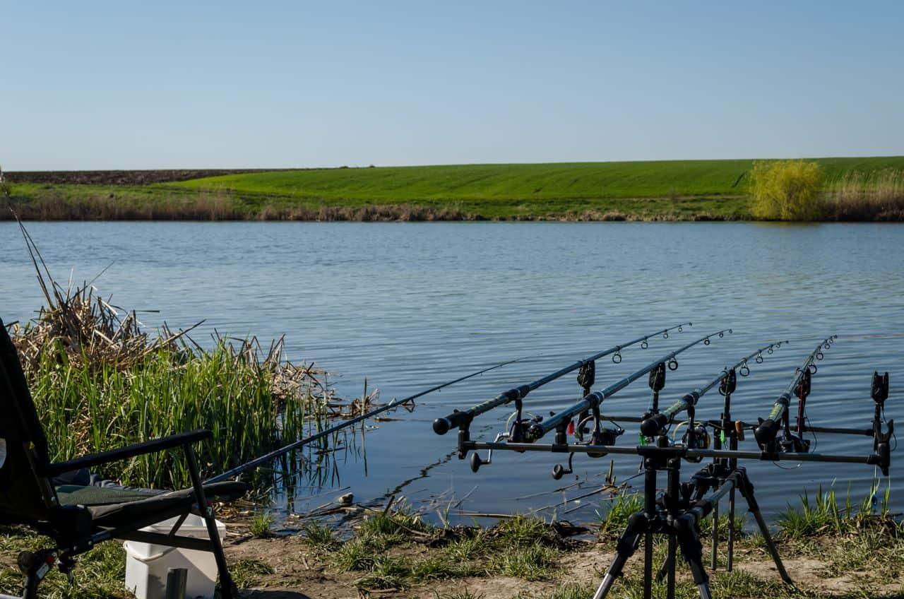 Pescuit la crap cu navomodel