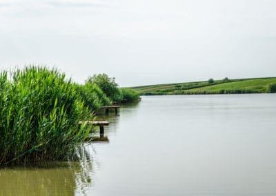 Lac pentru pescuit Bila2