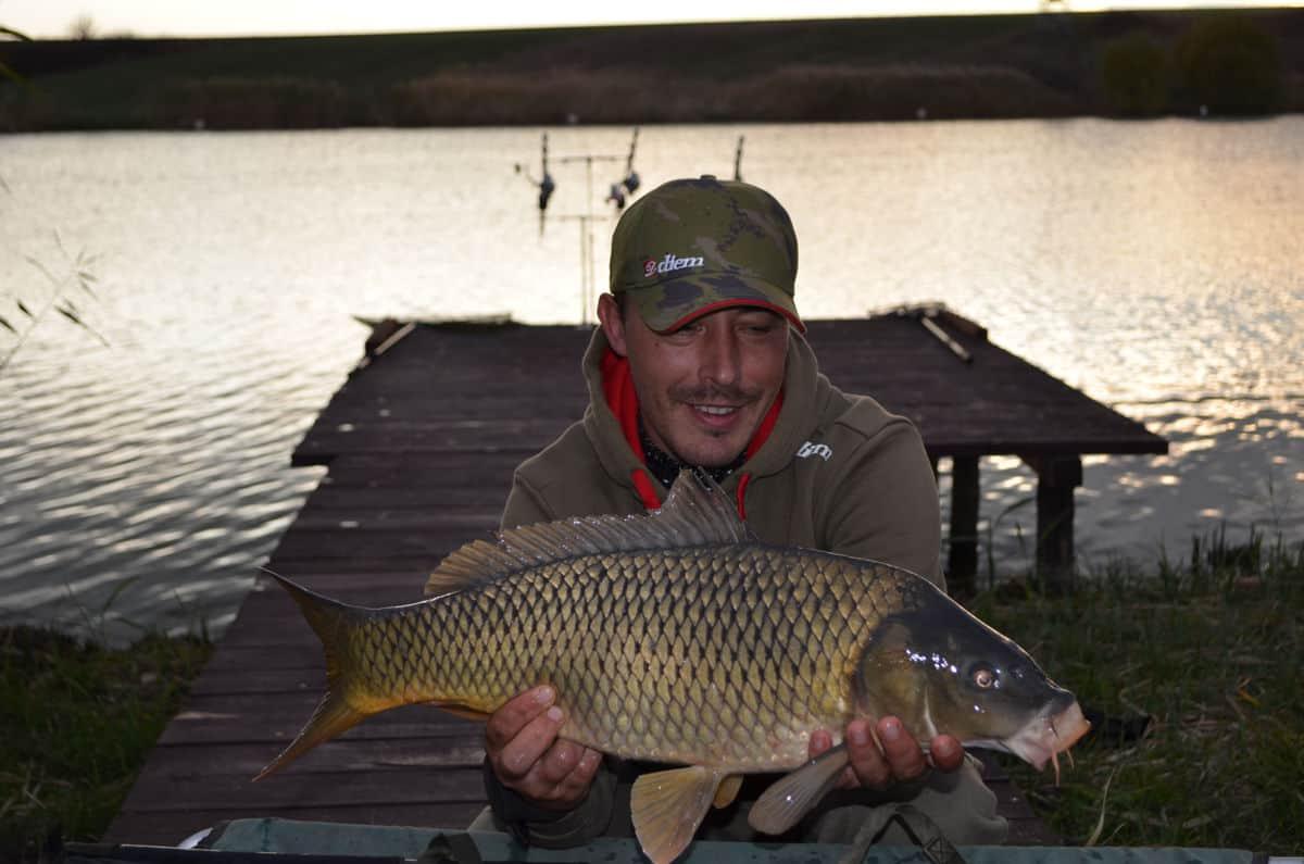 Pescuit la crap C&R pe Iazul Bila2
