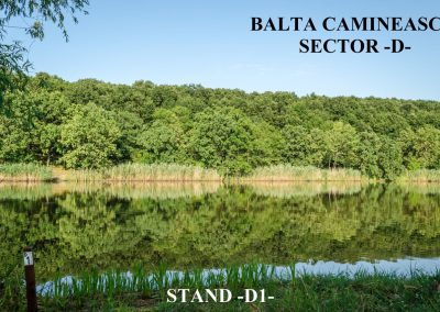 Balta Camineasca Stand Pescuit D1