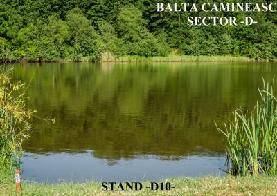 Balta Camineasca Stand Pescuit D10