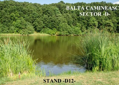 Balta Camineasca Stand Pescuit D12