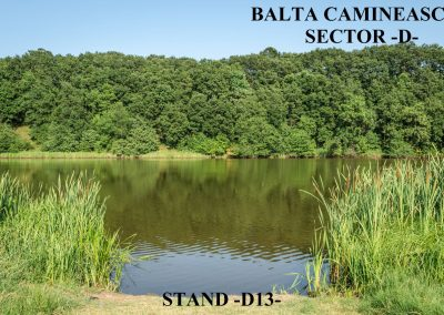 Balta Camineasca Stand Pescuit D13