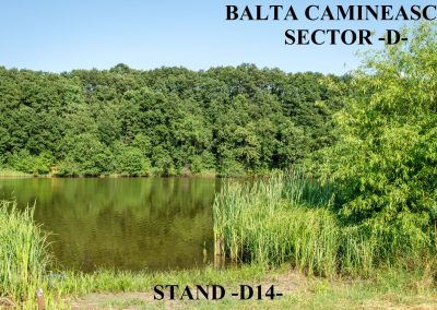 Balta Camineasca Stand Pescuit D14