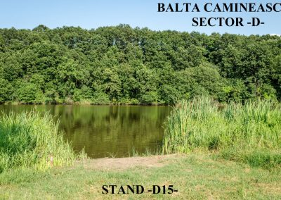 Balta Camineasca Stand Pescuit D15