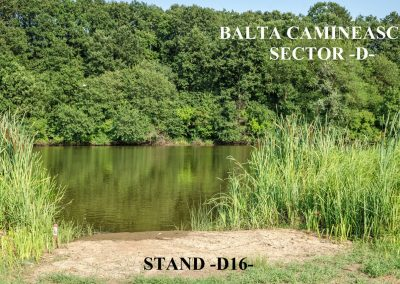 Balta Camineasca Stand Pescuit D16