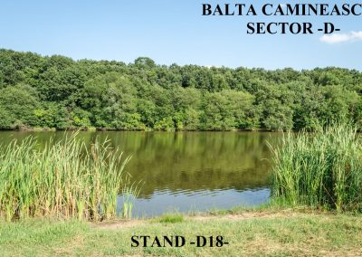 Balta Camineasca Stand Pescuit D18