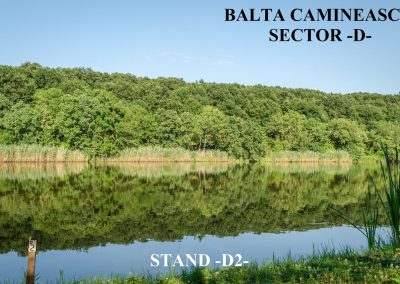 Balta Camineasca Stand Pescuit D2