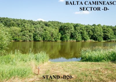 Balta Camineasca Stand Pescuit D20