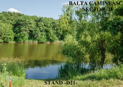 Balta Camineasca Stand Pescuit D21