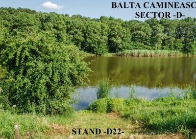 Balta Camineasca Stand Pescuit D22