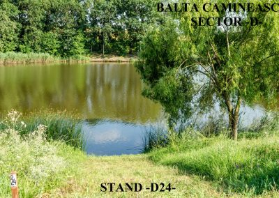 Balta Camineasca Stand Pescuit D24