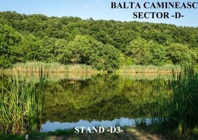 Balta Camineasca Stand Pescuit D3