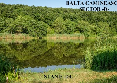 Balta Camineasca Stand Pescuit D4
