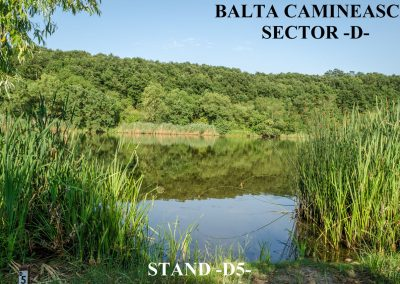 Balta Camineasca Stand Pescuit D5