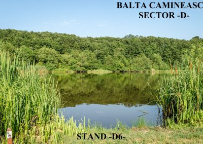 Balta Camineasca Stand Pescuit D6