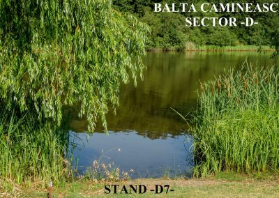 Balta Camineasca Stand Pescuit D7