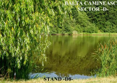 Balta Camineasca Stand Pescuit D8