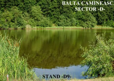Balta Camineasca Stand Pescuit D9