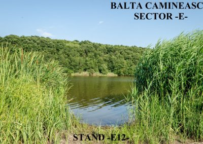 Balta Camineasca Stand Pescuit E12