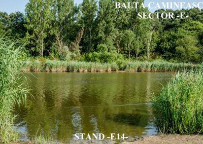 Balta Camineasca Stand Pescuit E14
