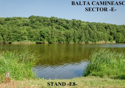 Balta Camineasca Stand Pescuit E8