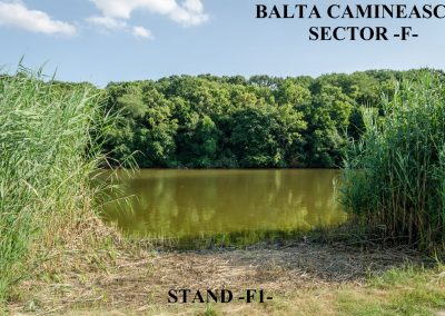 Balta Camineasca Stand Pescuit F1