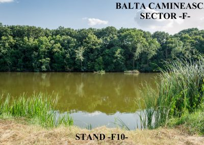Balta Camineasca Stand Pescuit F10