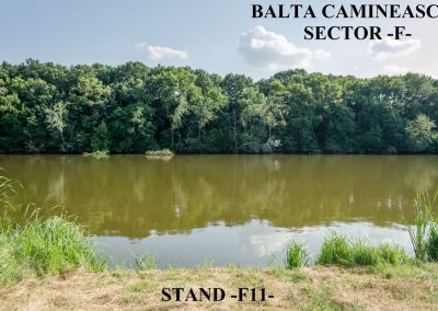 Balta Camineasca Stand Pescuit F11