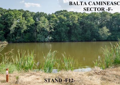 Balta Camineasca Stand Pescuit F12