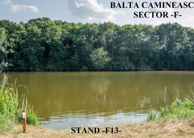 Balta Camineasca Stand Pescuit F13