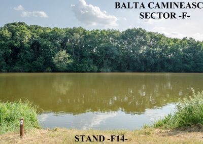 Balta Camineasca Stand Pescuit F14