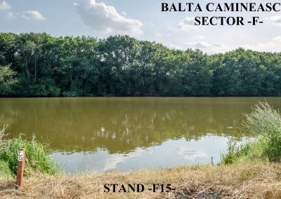 Balta Camineasca Stand Pescuit F15