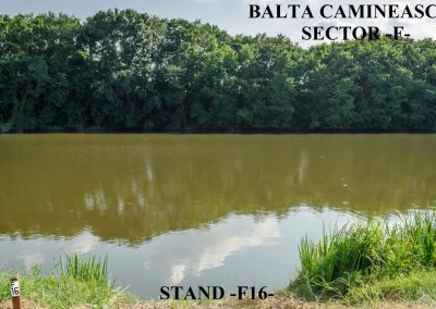 Balta Camineasca Stand Pescuit F16