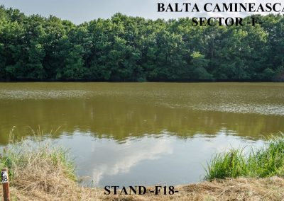 Balta Camineasca Stand Pescuit F18