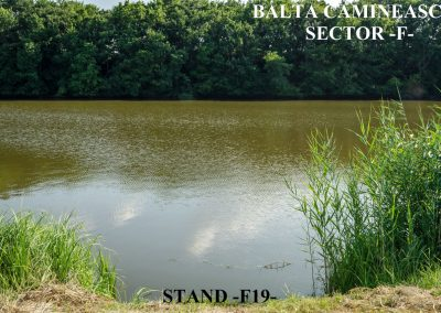 Balta Camineasca Stand Pescuit F19