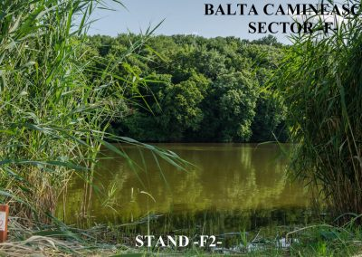 Balta Camineasca Stand Pescuit F2