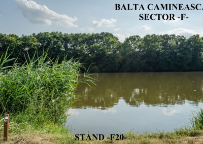 Balta Camineasca Stand Pescuit F20