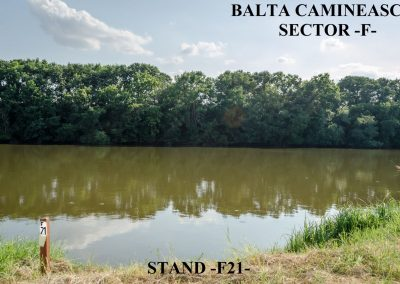 Balta Camineasca Stand Pescuit F21