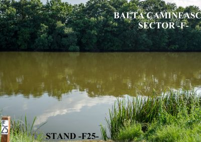 Balta Camineasca Stand Pescuit F25