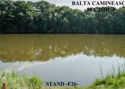 Balta Camineasca Stand Pescuit F26