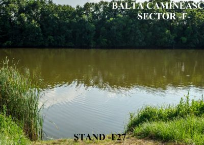 Balta Camineasca Stand Pescuit F27