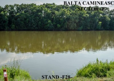 Balta Camineasca Stand Pescuit F28