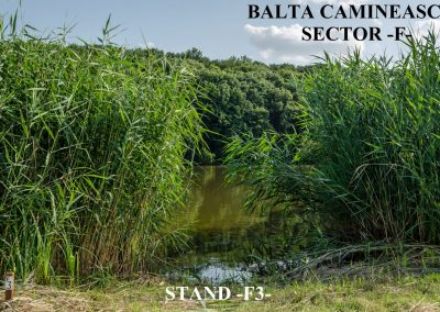 Balta Camineasca Stand Pescuit F3