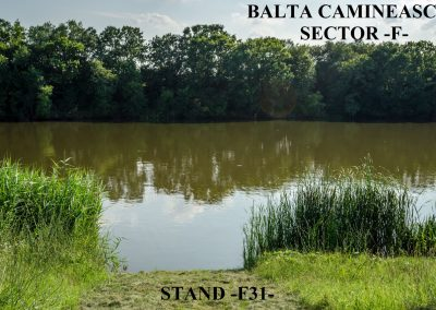 Balta Camineasca Stand Pescuit F31