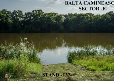 Balta Camineasca Stand Pescuit F32
