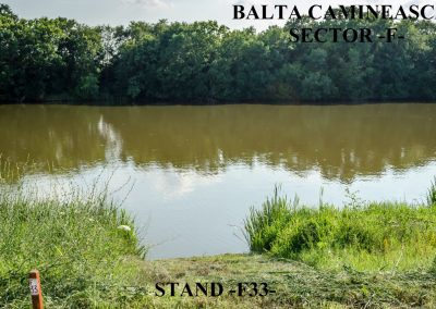 Balta Camineasca Stand Pescuit F33
