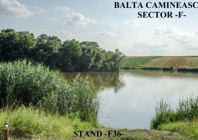 Balta Camineasca Stand Pescuit F36
