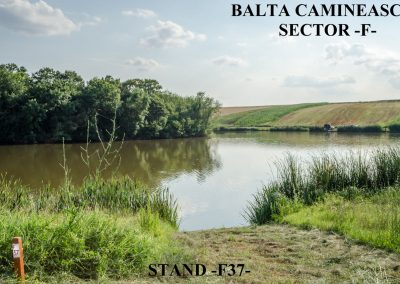 Balta Camineasca Stand Pescuit F37