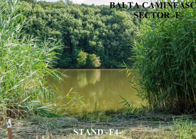 Balta Camineasca Stand Pescuit F4